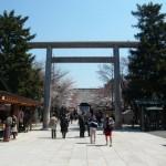 靖国神社 桜01